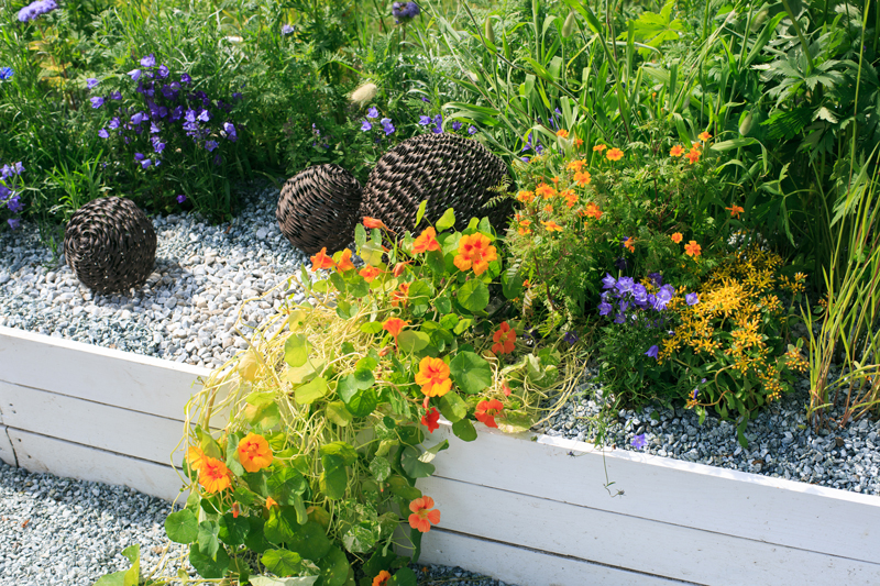 cheapest-way-to-make-a-shingle-garden-with-a-border2.jpg